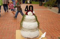 2010 Pumpkin Wedding Cake Topiary Display