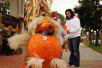 2010 Dog Pumpkin Topiary Display