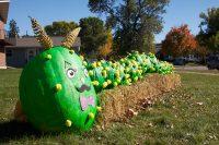2011 Caterpillar Pumpkin Topiary Display