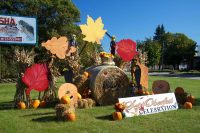 2011 Fall Colors Topiary Display