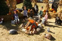 2012 Campfire Topiary Display