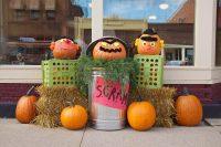 Sesame Street Pumpkin Display