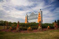 2013 Topiary Display