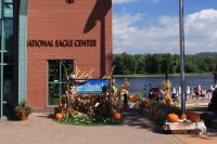 2014 National Eagle Center Topiary Display