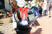 2014 Cat in the Hat Topiary Display
