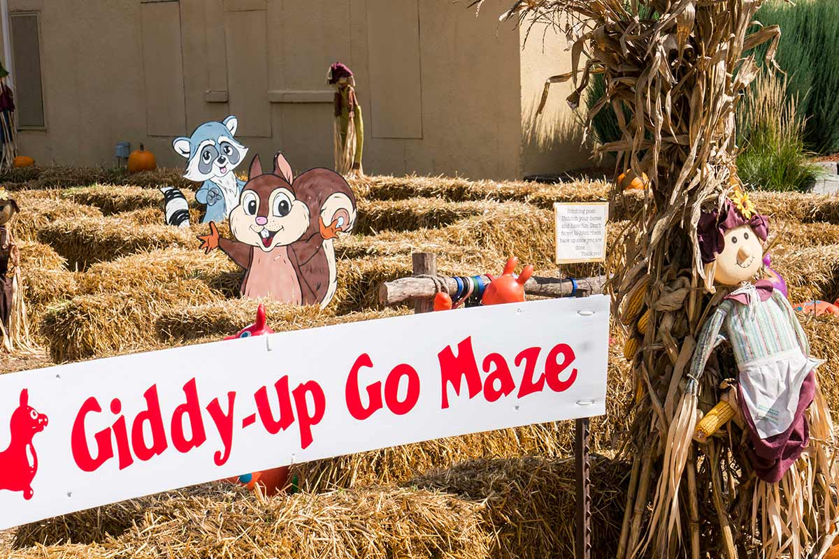 2016 Wabasha Giddy-Up Go Maze Topiary Display