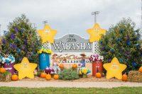 2016 Wabasha Topiary Display