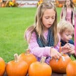 SeptOberfest Pumpkins